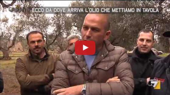 Olio estero spacciato per olio extravergine italiano