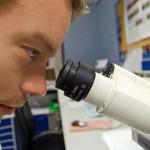 Ptx3, un gene che potrebbe spegnere i tumori